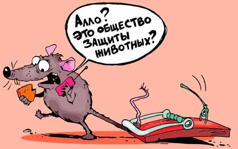 Анекдот про мышей